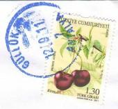 Почтовая марка Турции с изображением вишен