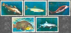 Серия почтовых марок Силенда с рыбами