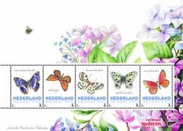 блок бабочки