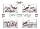 блок полярные птицы