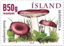 Почтовая марка Исландии с грибами