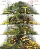 Марочный лист Польши с грибами