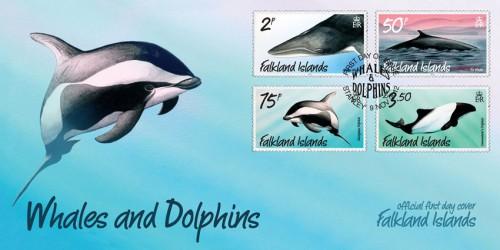 КПД Фолклендских островов с дельфинами