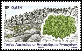 Почтовая марка с водорослями