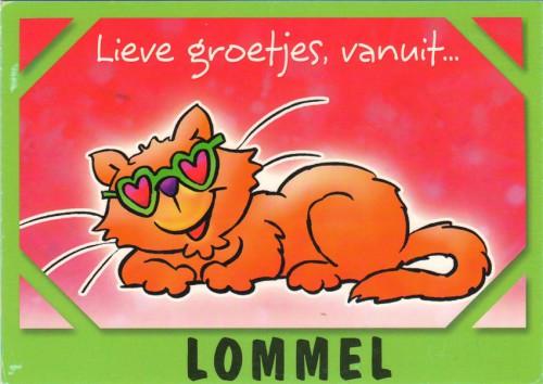 Открытка Бельгии кошка